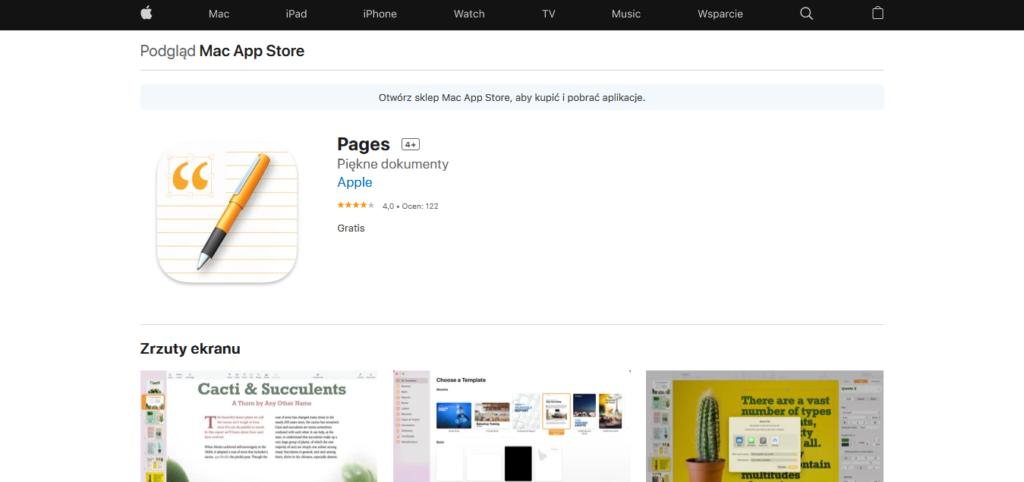Narzędzia Wirtualnej Asystentki: Pages
